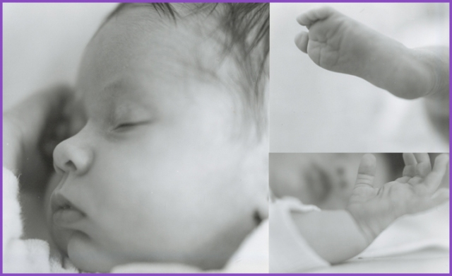 B'nai Emunah is proud to announce three new babies in the last two months!