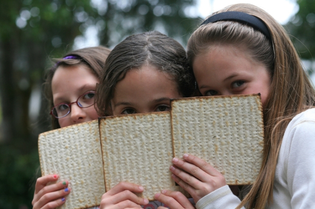 Celebrate Passover by taking a class with Congregation B'nai Emunah this year.
